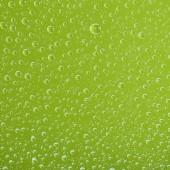 gocce dacqua trasparenti chiare su sfondo verde