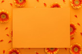 Photo top view of gerbera flowers and empty card on orange background