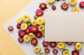 horní pohled na žluté a fialové sedmikrásky květiny s prázdným papírem na bílém a žlutém pozadí