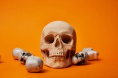 Photo skulls on orange background, Halloween decoration