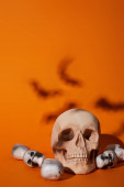 Photo skulls with bats shadow on orange background, Halloween decoration