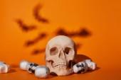 Fényképek koponyák denevérek árnyék narancs háttér, Halloween dekoráció