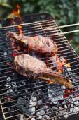 chutné maso grilování na grilu a kousky uhlí venku