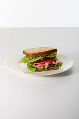 Fresh sandwich with lettuce, ham, cheese, bacon and tomato on plate isolated on white stock vector