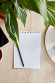 top view of green plant with leaves and blank notebook with pencil on wooden surface
