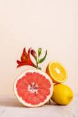 bézsen izolált vörös alstroemériát és citrusféléket tartalmazó virág- és gyümölcsösszetétel