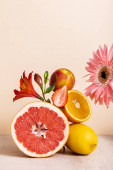 floral and fruit composition with gerbera, Alstroemeria, citrus fruits, strawberry and peach on beige background