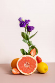 floral and fruit composition with purple eustoma and summer fruits isolated on beige