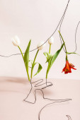 floral composition with white tulips and red Alstroemeria on wires isolated on beige