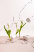 kreatív virágkompozíció tulipánokkal drótokon, csészén és kockákon, bézsen elszigetelve