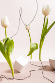 selective focus of creative floral composition with tulips on wires, cup and square cube isolated on beige
