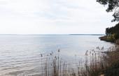 nádasok közel kék tó ellen ég felhők