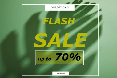 Tropical leaf shadow on green background with flash sale illustration stock vector