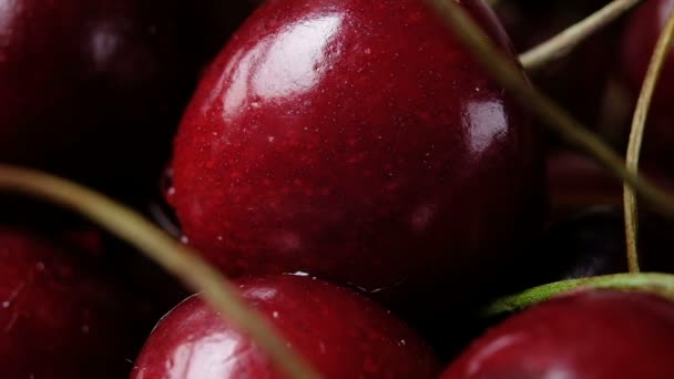 Goccia di acqua scorre giù dal close-up di bacca ciliegia. Slow motion