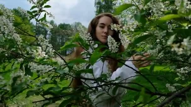 Sexy European girl model posing on camera in blossoming bird cherry, slow motion. A woman with long lush hair is photographed in the park, slow motion