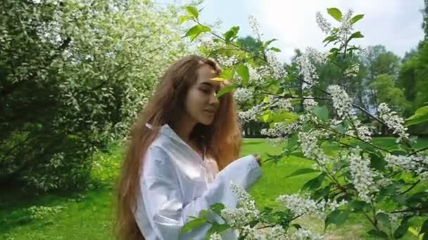 Sladká dívka Evropské je čichání Kvetoucí třešeň ptačí, pomalý pohyb. Žena s dlouhou bujné vlasy těší příroda v parku.