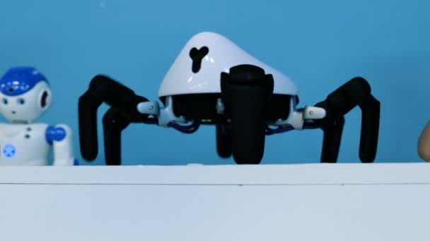 Spider robot dancing on the table