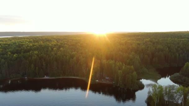 strahlende Sommersonne über grünem dichtem Wald am Fluss