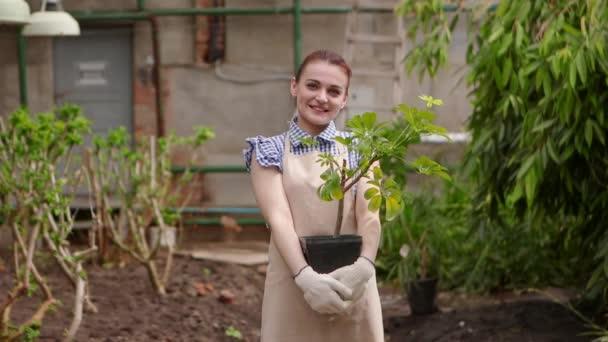 Gärtnerin im Gewächshaus hält Topf mit Pflanze in den Händen, blickt in die Kamera und lächelt.
