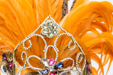 detail of bright stones and carnival feathers
