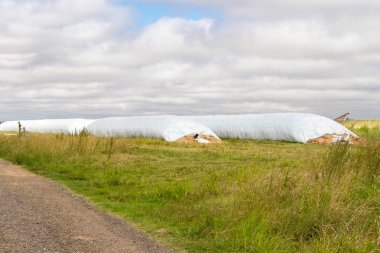 countryside landscape with silos bag in argentina