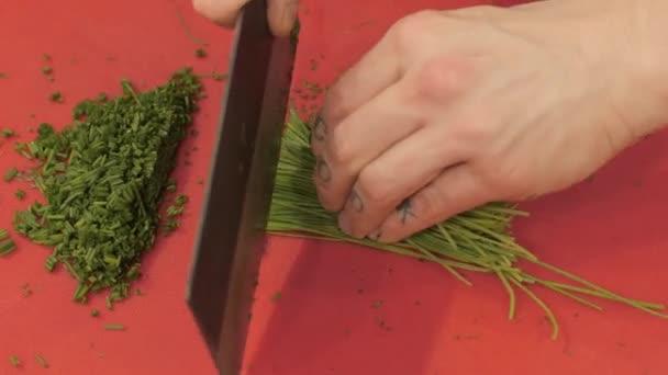 Ruce se vařit s tetování řezání čerstvých zelených na palubě v pohledu shora kuchyně restaurace. Profesionální kuchař pomocí nože pro řezání při přípravě jídla v kavárně