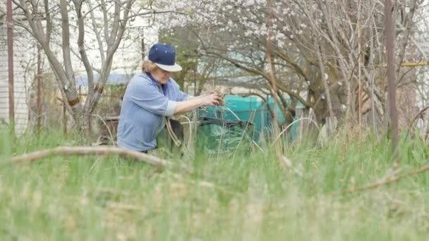 Zahradníka žena čištění suché trávy a zahradnické práce v zahradním dvorku