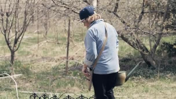 Gardener woman using watering can for watering decorative bush in garden backyard