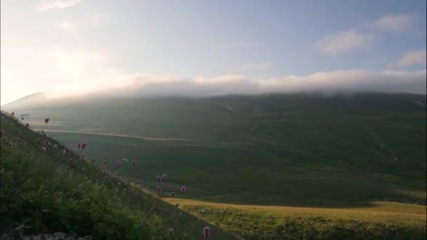 Zelené hory a mraky obloze nad vrcholky pokryta zelený Les, timelapse