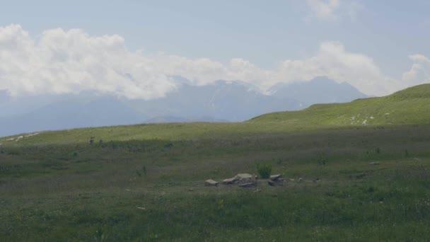 Turistické lidí, kteří jdou na zelené louce na horách krajina pozadí