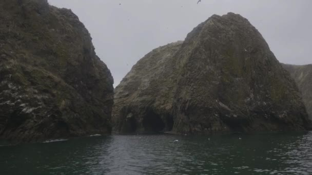 Landscape rocky cliffs and sea birds swimming and flying over sea water
