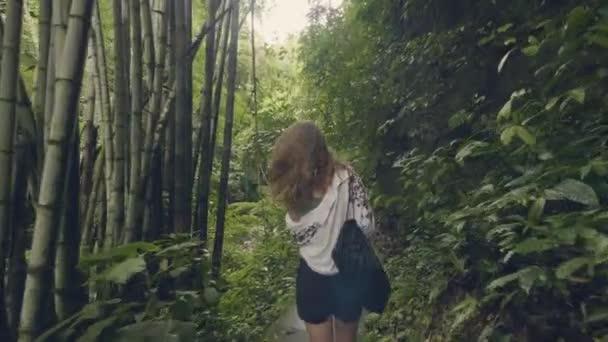 Turistické žena chůze na cestě v tropickém pralese na zelených stromů a rostlin zázemí. Pohled zezadu putovní holka v exotických deštných tropických stromů a stálezelených rostlin.