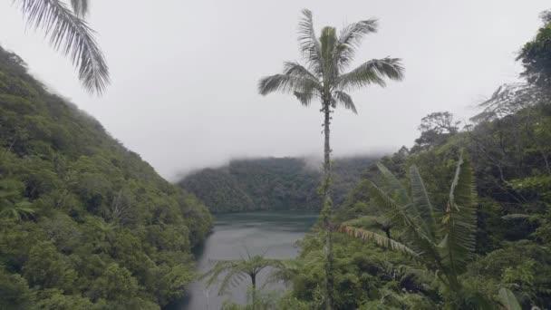 Reggel köd tó és zöld trópusi erdő, a hegyek felett. Pára ködös és trópusi tava, többek között a zöld Felföldi és hegyi lefedett dzsungel.