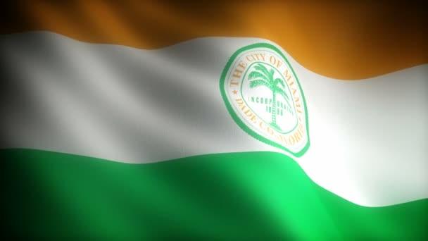 Vlajka Floridy Miami (bezproblémová)