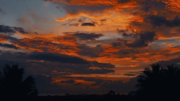 zrychlené video západ slunce, východ slunce v džungli. siluety palem na a malý proužek moře na hotelu horizonte. Time lapse mraky letět velmi rychle na pozadí západ slunce, východ slunce. Změna oblohy