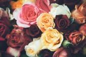 Fotografie Romantische Vintage Rosenstrauß