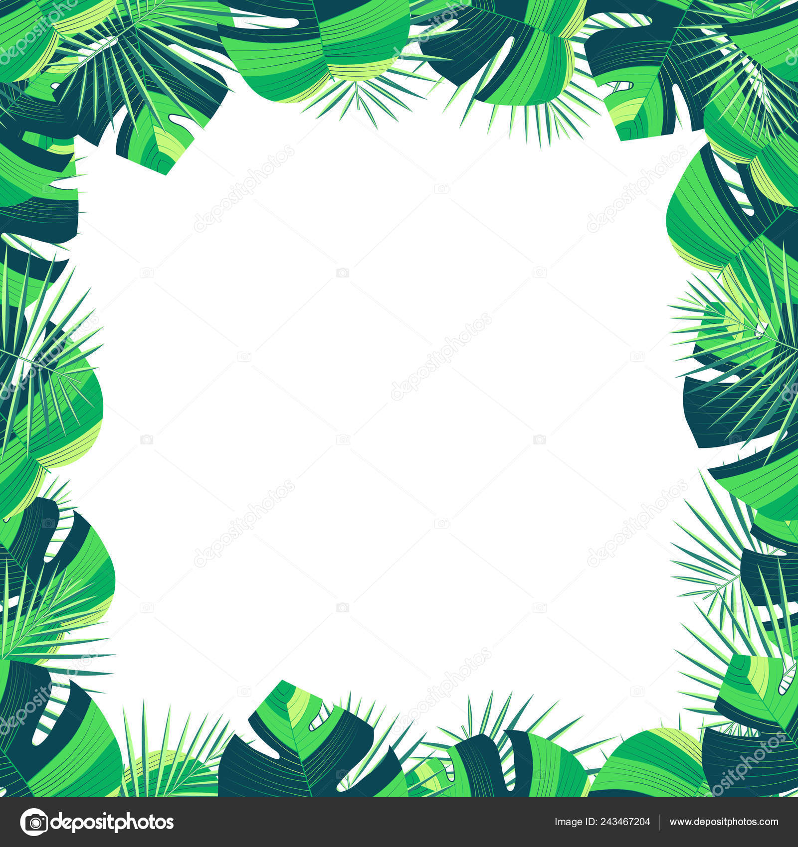Tropical Exotic Background Floral Design For A Banner Fashion Sale Poster Template Cool Decorative Summer Art Illustration With Tropical Palm Leaves Frame Cute Template For Advertisement Flyer Stock Vector C Chiken Brave 243467204