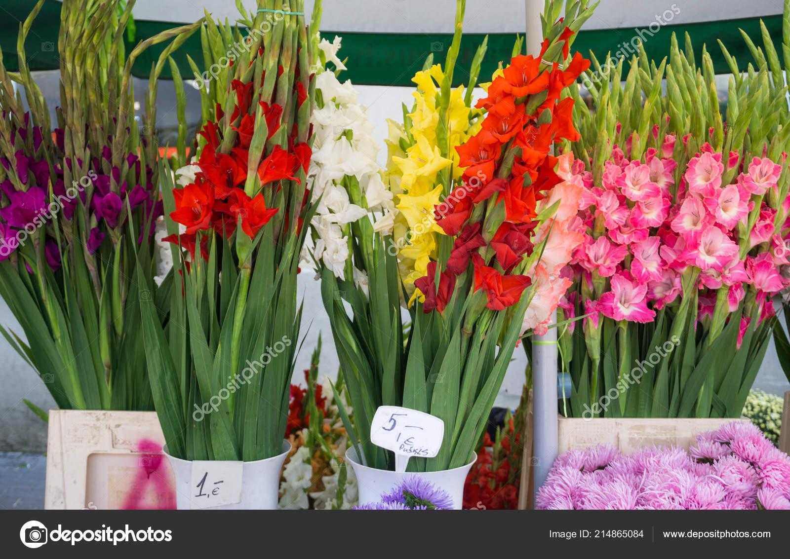 Différentes fleurs automne en vente sur le marché central de bouquets avec  des prix — Image de Elinque 101c69f69e03