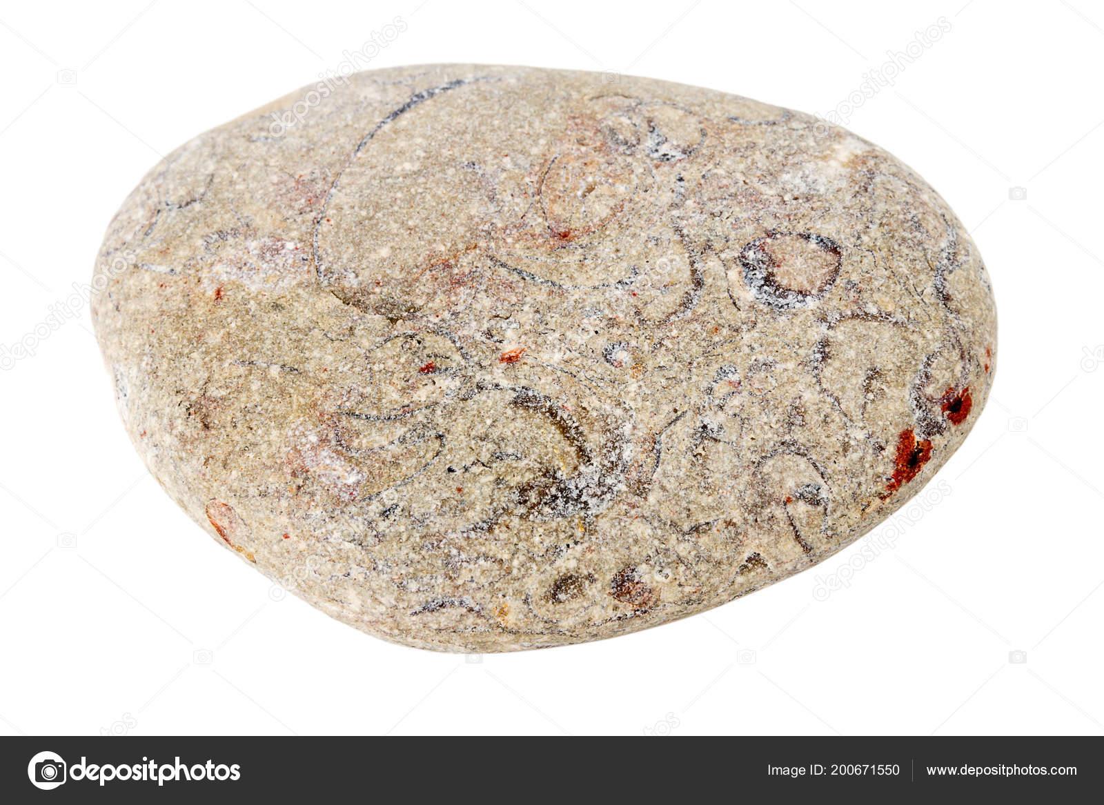 Sea Stone Isolated White Background Gray Rounded Pebble