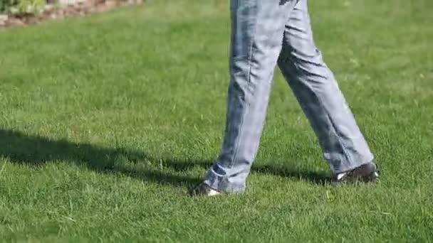 Elegant Male Shoes walking on green park grass.