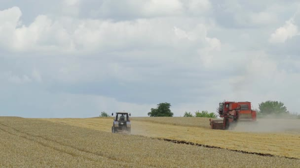 Agricultural tractor. Grain harvesting equipment in the field. Harvest time