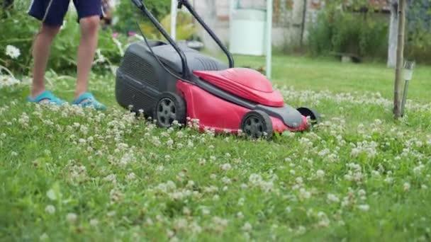 malý chlapec sečení trávníku za jasného letního dne, detail