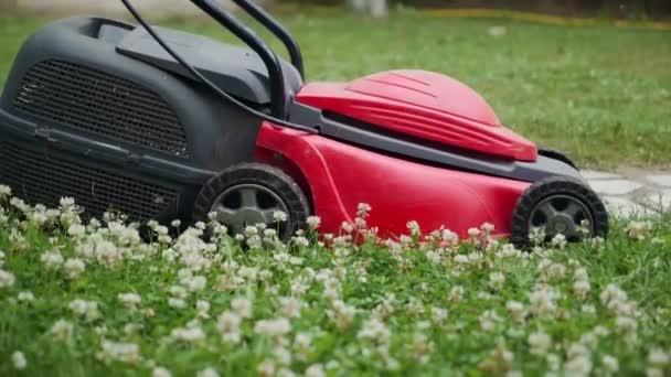 Detail sečení trávníku. Ženské sečení trávníku v předměstí