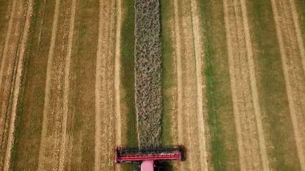Letecký pohled na moderní kombajn v akci. Pšeničné pole v době sklizně. Zemědělský sektor