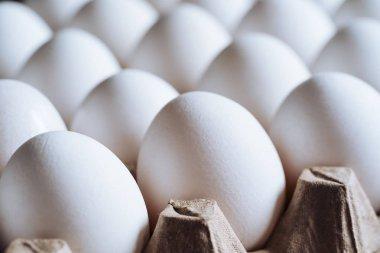 White eggs on a tray. Eggs in carton box. stock vector