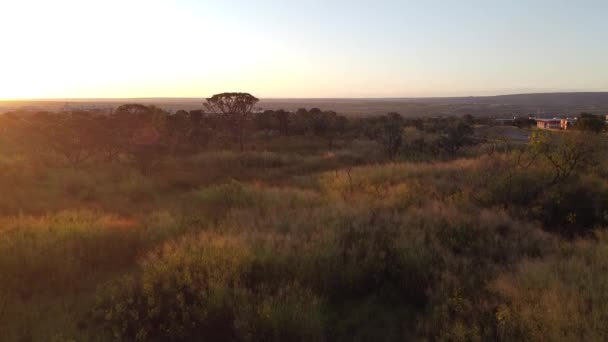 Sonnenuntergang im Burle Marx Park im Nordwesten Brasiliens, Brasilien