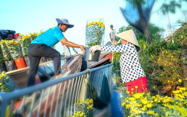 Ho Chi Minh City, Vietnam - February 2nd, 2019: A couple of farmers transport flowers on the riverbank to serve the Lunar New Year flower trade in Ho Chi Minh City, Vietnam