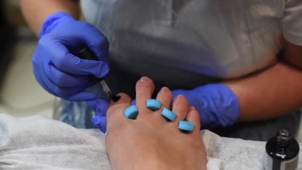 process of professional pedicures at salon. concept of beauty and health.