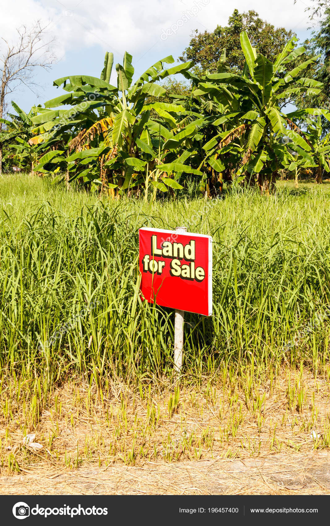 Red and yellow land for sale sign photo by khellon