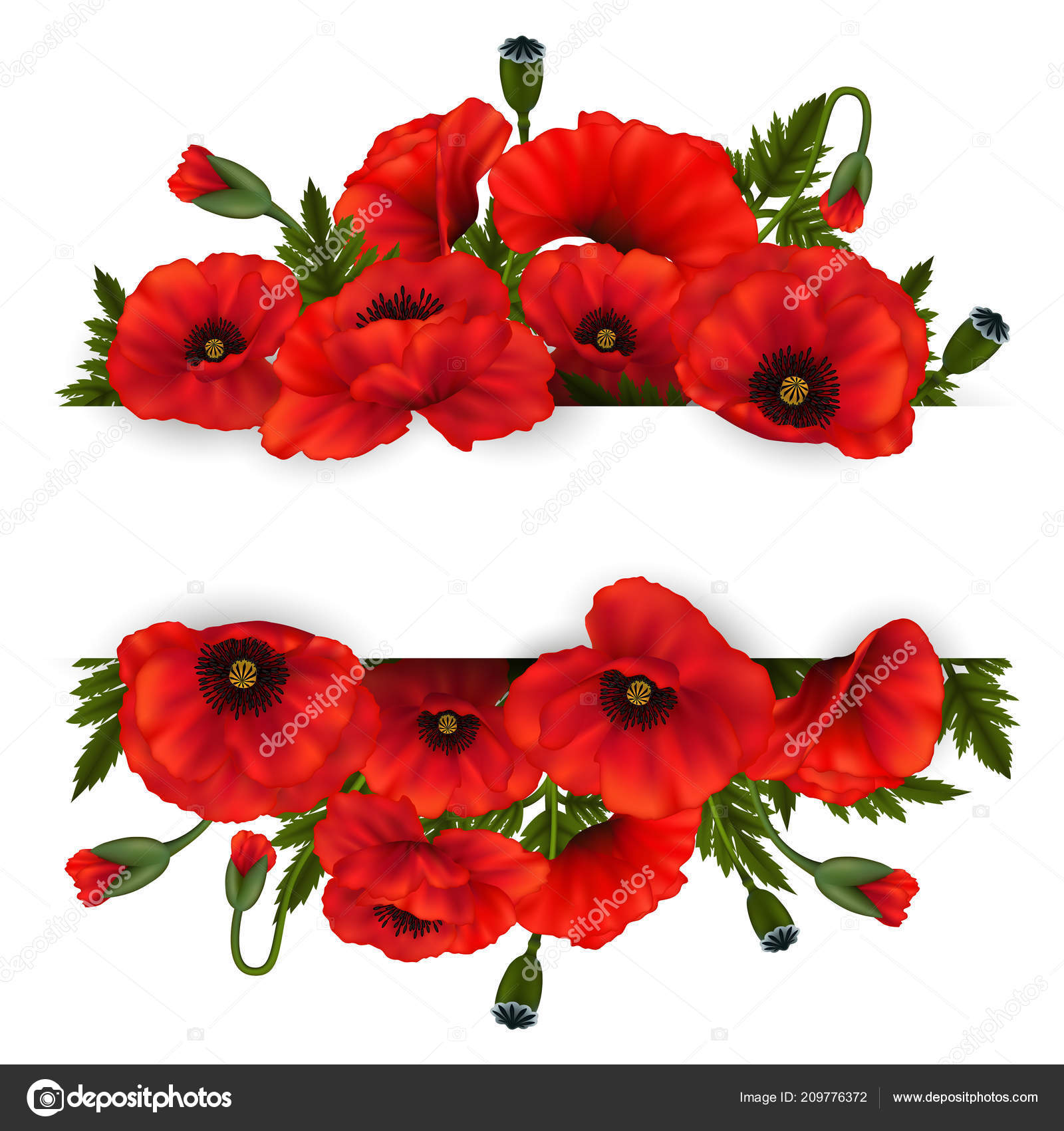 Illustration Template Wedding Greeting Invitation Card Poppy Flowers Horizontal Paper Stock Vector